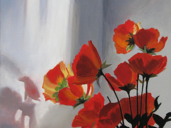 Sunlight Poppies